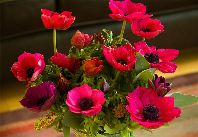 FLOWER DELIVERY TO OKAZAKI JAPAN AND IMPORTANCE OF FLOWER TO HUMAN